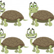 Stock Vector: Set of turtles
