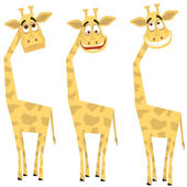 Set of giraffes — Stock Vector