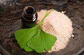Fresh leaves ginko biloba essential oil and powder - beauty trea — Stock Photo