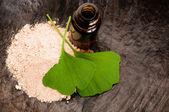 свежие листья гинкго билоба эфирного масла и порошок - красоты трея — Стоковое фото