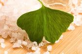 свежие листья гинкго билоба эфирного масла и морской соли - красота tr — Стоковое фото