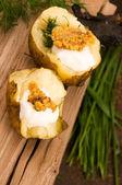 与酸奶油、 谷物芥末和香草烤的土豆 — 图库照片