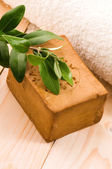 Natural Olive Soap With Fresh Branch — Stock Photo