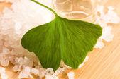 Fresh leaves ginko biloba essential oil and sea salt - beauty tr — Stock Photo