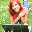 Picnic with laptop 2 — Stock Photo