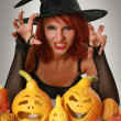 Magic halloween — Stock Photo #6473162