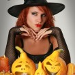 Magic halloween — Foto de stock #6473164