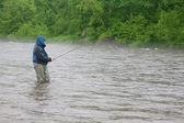 Fisherman catches a salmon river — Stock Photo