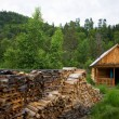 Wood house. Stocked wood. — Lizenzfreies Foto