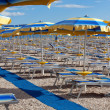 Stock Photo: Beach with perfectly parallel lines of parasols