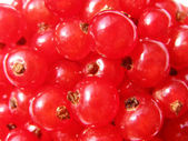 Red currant - summer food — Stock Photo
