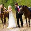 Bride and groom with horses — Stock Photo