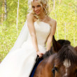 Stock Photo: Bride and horse