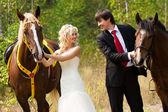 Невеста и жених с лошадьми — Стоковое фото