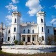 Sharovsky castle - Stock Photo