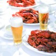 Crawfish and beer — Stock Photo #6259427