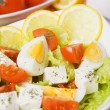Egg and cheese salad — Stok fotoğraf