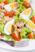 Eggs and tuna salad — Stock Photo