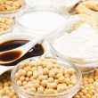Soybean with soy products — Stock Photo