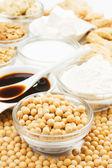 Soja met sojaproducten — Stockfoto