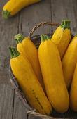 žluté dýně — Stock fotografie