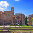 Italy. Rome. Ancient ruins of the Roman Forum — Stock Photo