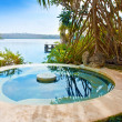 Pool in tropical garden. — Foto Stock