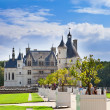 Castle of a valley of the river Loire. France. Chateau de Chenonceau - Stockfoto