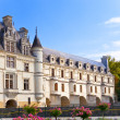 Castle of a valley of the river Loire. France. Chateau de Chenonceau - Stok fotoğraf