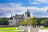 Castle of a valley of the river Loire. France. Chateau de Chenonceau — Stock fotografie