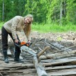 The young woman in wood saws a tree a chain saw - Foto Stock