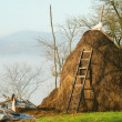 Stock Photo: Rural scene haystack