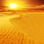 Landscape of desert — Stock Photo