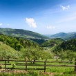 Carpathian Mountains. — Stock Photo