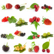 Set of fruits — Foto de Stock
