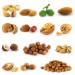 Stock Photo: Set of nuts