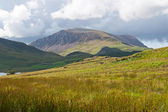Beautiful landscape in Snowdonia, Wales — Stock Photo