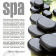 Stock Photo: Black spa stones