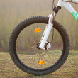 Bicycle wheel — Stock Photo #5622196