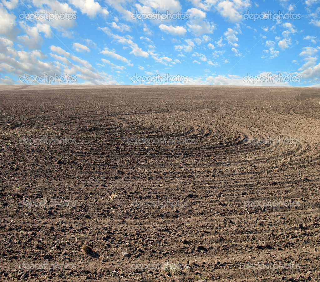Field And Sky Photography Ploughed Field And Blue Sky