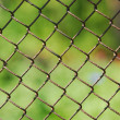 Stock Photo: Wire fence