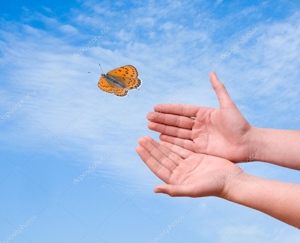 Butterfly flying from hand — Stock Photo #6627951