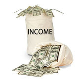 Bags with income — Stock Photo