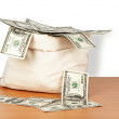 Money bag — Stock Photo
