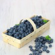 Basket with blueberries — Stock Photo #6161898