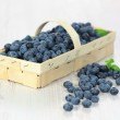 Basket with blueberries — Stock Photo #6161906