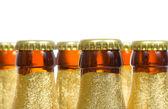 Flessen bier — Stockfoto