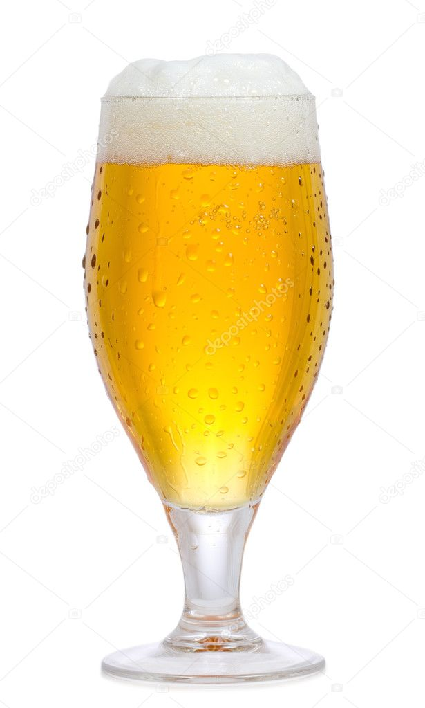 beer brewing research paper