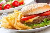 Hamburger with fries — Stock Photo