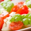 Salad with mozzarella, tomatoes and basi — Stock Photo